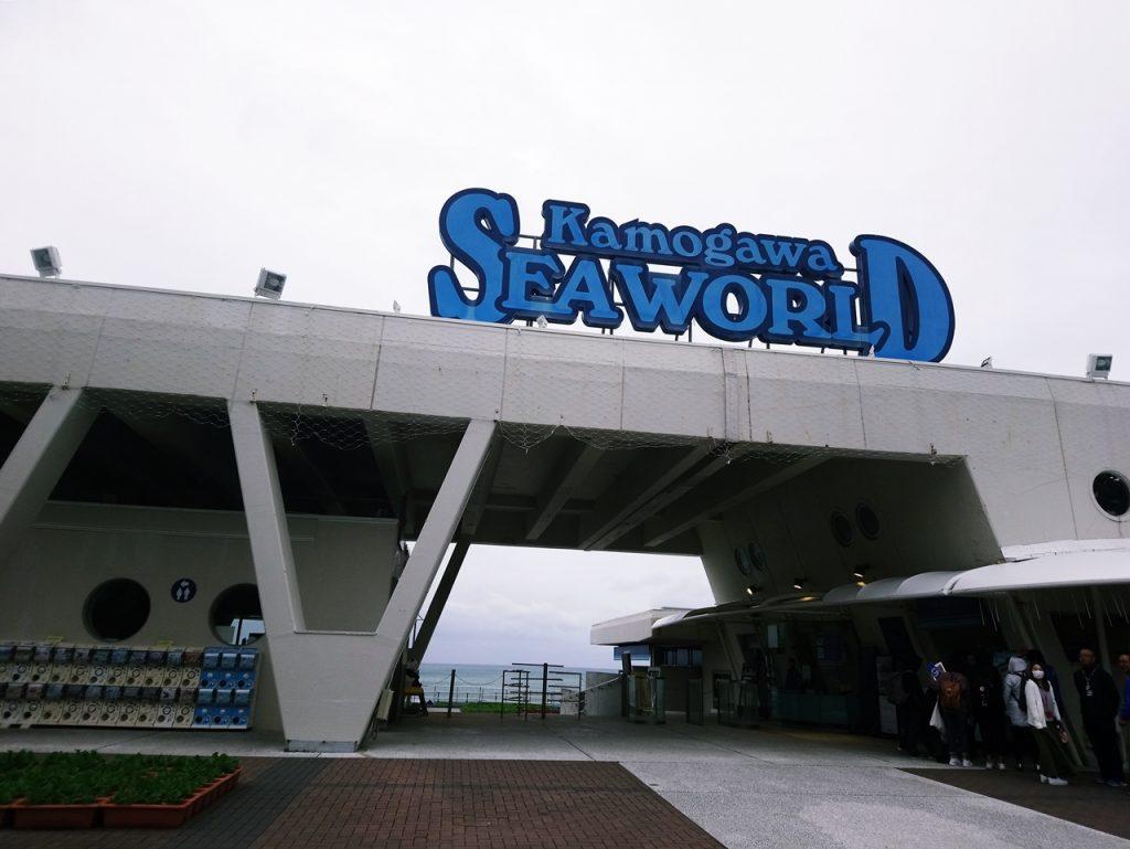 千葉縣鴨川海洋世界 精采絕倫的海洋王者虎鯨表演